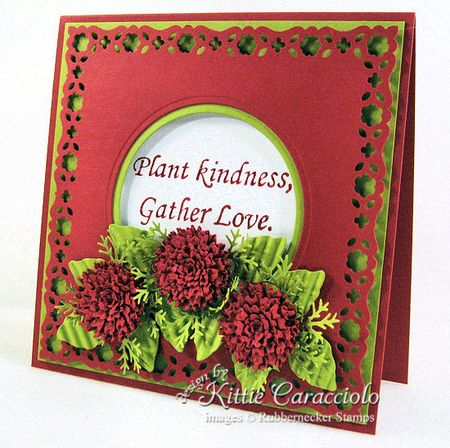 KC Plant  Kindness 1  right