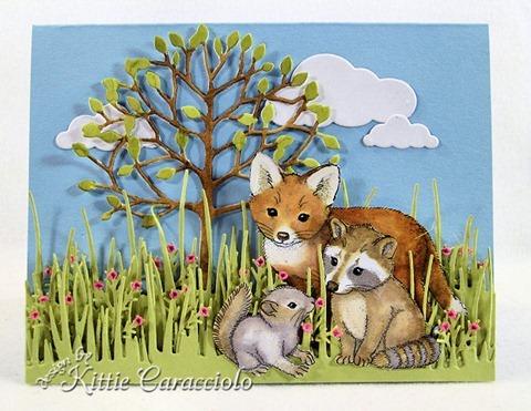 KC Fox Raccoon Squirrel 1 center