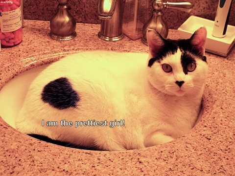 Cassie in sink 7 22 13