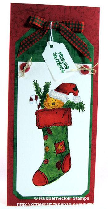 Kc_kitten_in_stocking